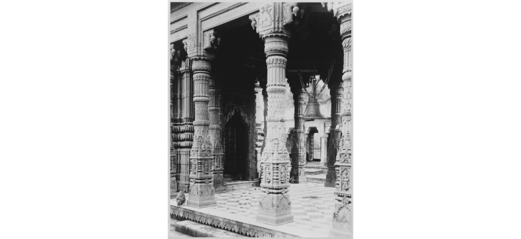 temple des singes de varanasi avec des colonnes